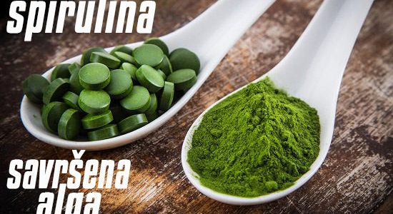 Savršena alga spirulina